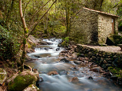 The old mill (nunes.rui) Tags: longexposure trees mill nature leaves rio river waterfall rocks stream le cascata penela azenha espinhal fujifilms6500 pedradaferida ruinunes