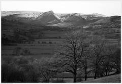 _DSC5295ed (alexcarnes) Tags: macro alex back nikon snowy district dove derbyshire hill peak dragons upper chrome valley tamron 90mm f28 carnes longnor d810 alexcarnes