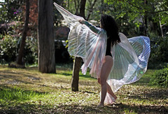 Anah, 2016 (Cristina Inchustegui Massieu ) Tags: girls people woman latinamerica nature mxico female fairytale mexicana forest canon mexico dance movement mujer women dancing natural feminine danza style naturallight movimiento mexican fairy bosque latin estilo bellydance latina canondslr mujeres canoneos baile hada femenino mexicanas femaleform feminity latinoamrica danzarabe naturalillumination