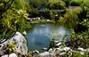 Chinese Garden - Sydney - 2014 - Australia. (Eric R  Dodd) Tags: sydney australia darlingharbour chinesegarden ericrdodd