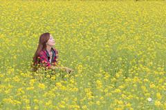 油菜花海 (Wi 視覺) Tags: flowers girl beautiful taiwan 花蓮 花海