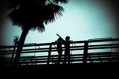 IMG_0636-2 (aninditaroy5757) Tags: street bridge friends summer sky tree silhouette mystery kids night dark children landscape fun scenery play friendship citylife streetphotography bangladesh ameture naturesfinest firstquality 100faves flickrplatinum goldenphotographer artlegacy flowersmacroworld canon600d