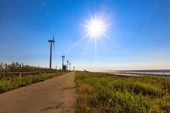 (Digital_trance) Tags:   taiwan changhua changhuataiwan landscape nature sunset     oyster  clam    seafood  windmill star  cloud   venus  jupiter moon    crab       startrails