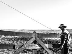 'Memoriais da porteira..' (Suzana Fernandes Fotografia) Tags: white rio grande do saudade estrada campo caminhos sul pampa rancho horizonte gaucho cancela rumo blakc porteira distncia campeiro tupanciret