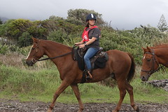 IMG_EOS 7D Mark II201604039708 (David F-I) Tags: horse equestrian horseback horseriding trailriding trailride ctr tehapua watrc wellingtonareatrailridingclub competitivetrailriding sporthorse equestriansport competitivetrailride april2016 tehapua2016 tehapuaapril2016 watrctehapuaapril2016