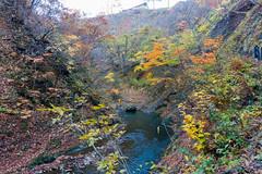 NarukoOnsen-58 (clouddra) Tags: autumn japan jp miyagiken narukogorge narukoonsen sakishi
