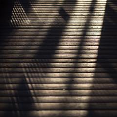 X rays (Cosimo Matteini) Tags: wood light shadow london lines pen floor olympus deck rays flooring xrays decking crossed m43 mft ep5 cosimomatteini mzuiko45mmf18