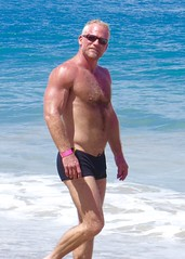 IMG_1076 (danimaniacs) Tags: shirtless hairy man hot sexy guy beach pecs muscle muscular trunks speedo swimsuit stud mansolo