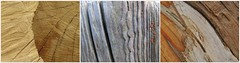 wood works (1) (Edinburgh Nette ...) Tags: collages abstracts deadwood triptychs april16