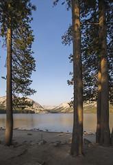 Tenaya Lake (paulabarrickman) Tags: california park trees lake mountains landscape national yosemite redwoods tenaya