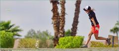 1136 (AJVaughn.com) Tags: fountain alan del golf james j championship memorial fiesta tour camino outdoor lakes hills national vista scottsdale disc vaughn foutain 2016 ajvaughn ajvaughncom alanjv