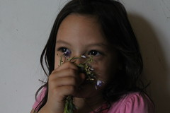 kid portraits (hibbityjibbittie) Tags: pink flowers white black cute colors youth children kid eyes purple bright young happiness whitebackdrop lovely homestudio