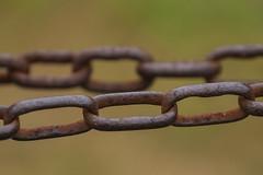 chains (R.Duran) Tags: espaa spain nikon espanha europa europe asturias espagne d300 asturies piloa tamron16300mm