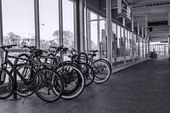 Bike rack at harlem blue line station street pic3 4-25-2016 (Artemortifica) Tags: street bridge sky chicago cars clouds buildings construction blueline crane bikes graffity milwaukee western trucks damen
