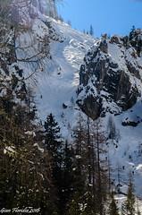Alta Badia: La Val de Mezdì, mito degli sciatori freestyle (Gian Floridia) Tags: winter snow mountains alps freestyle neve inverno pista slope dolomites dolomiti cime skirun altabadia colfosco grupposella pisciadù innevate valdemezdì