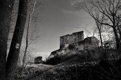 castle mono (timmytimtim75) Tags: sky bw castle monochrome forest hessen ruin habichtswald weidelsburg