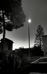 Background (alericci77) Tags: blackandwhite nokia background lumia1020