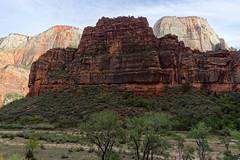 Park Narodowy Zion | Zion National Park