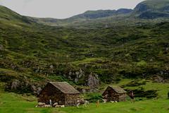 verlaten zomerdorpje van de vroegere herders (merciekes) Tags: jeroen sam wandelen cis bergen dieren douwe pyreneen struinnatuur