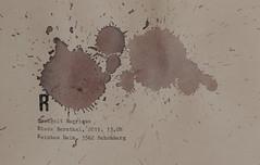 Arbeit 35 (Harald Reichmann) Tags: arbeit35 rotwein wein fleck muster verteilung signatur zweigelt barrique riedebernthal 2011 niederösterreich kamptal schönberg anmutung visualisierung r eindruck kraft energie alkohol papier
