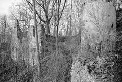 Ruins (harv1984) Tags: ruins rodinal150 ruinen hochhaus fujineopanacros100 fujigw690 niederhaus januar2016
