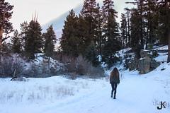 khan_portfolio5 (julia rae khan) Tags: walk trail bigbear portfolio1 leadinglines