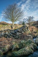 goathland-0222 (moose2484) Tags: sky landscape outdoor yorkshire northyorkshire goathland grosmont