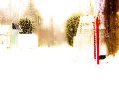 souvenir d'enfance (photosgabrielle) Tags: city winter snow hockey alley hiver neige ruelle ville photosgabrielle