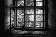dream of the soft look (cherryspicks) Tags: old trees light blackandwhite bw building texture abandoned window glass monochrome architecture dark soft shadows artistic decay walls