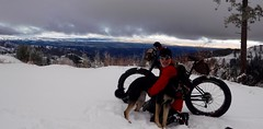 More Winter Waha'n (Doug Goodenough) Tags: bicycle bike cycle pedals spokes fatbike fat snowbike snow biking winter waha idaho 2016 16 january jan trek farley 5 scott doug sadie drg53116 drg53116p drg53116wahweekend drg531