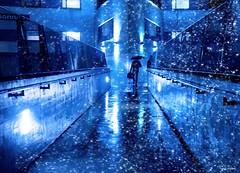 Once upon a time (Ren Mollet) Tags: street morning blue shadow silhouette night umbrella nightshot earlymorning streetphotography aarau blau bluelight behmen renmollet