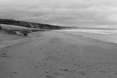 Blowing Sand,Sands of St Cyrus,St Cyrus National Nature Reserve_jan 16_713 (Alan Longmuir.) Tags: monochrome aberdeenshire grampian blowingsand stcyrus shiftingsands sandsofstcyrus stcyrusnationalnaturereserve