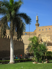 Building and Palm Trees (shaire productions) Tags: world city travel urban building tourism architecture design photo tour exterior image citadel egypt picture mosque structure architectural nile photograph egyptian traveling islamic