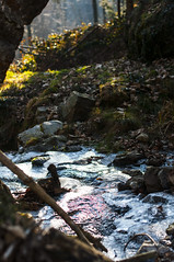 Silver river (la_peppy) Tags: trees nature water river 50mm nikon outdoor d90