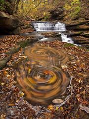 Meadow's Swirls (Bill Fultz) Tags: meadowcreek millsprings brownlanierhouse millspringsmill lakecumberland kentucky kentuckywaterfall autumn leafswirls waynecounty