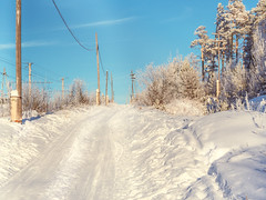 The road home (memfisnet) Tags: road travel winter snow cold tree forest olympus siberia snowbank olympusem5