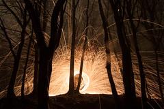 Steel Wool (troppobronzo) Tags: trees forest lights exposure steelwool longtime