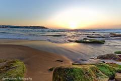 Bondi Sunrise (darrinwalden Photography) Tags: green beach bondi sunrise coast moss sand rocks surf waves glow sydney australia aussie