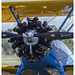 Boeing Stearman N75MR