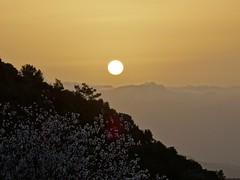 Early morning. (Ia Löfquist) Tags: sunrise walking dawn hiking walk kreta hike crete vandring soluppgång kalamafka gryning vandra ierapeyra