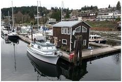 gibsons boathouse (tesseract33) Tags: world ocean travel light sea marina docks nikon waterfront gibsons boathouse harbours tesseract33 squamishphotographers peterlangphotographynet liveaborads