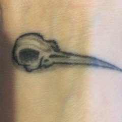 The first tattoo i had done. A humming bird skull  xx (misspookiedoodle) Tags: tattoo skull hummingbird blackink shading hummingbirdskull