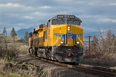 (dkuttel) Tags: train transportation unionpacific columbiarivergorge easternoregon canon5dmkiii
