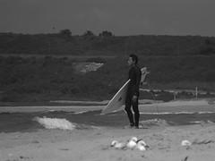 The Surfer (Xploding_Unicorn) Tags: ocean white black beach blackwhite waves surfer sydney australia surfing