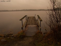 Dock at Dusk (Explore!) (SCOTTS WORLD) Tags: winter light shadow sky lake detail abandoned nature water leaves digital america landscape dock woods angle dusk pov decay perspective adventure shore weathered dilapidated 248 2015 oaklandcounty lakeorion lakesixteen olympusepm1