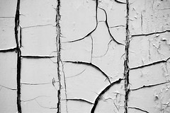Old Peeled Surface by ioanna papanikolaou (joanna papanikolaou) Tags: door wood old white abstract broken closeup wooden peeling paint background details weathered abstraction aged cracks peel cracked grungy shabby exfoliated
