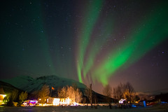DSC01203 (jygoh92) Tags: longexposure travel pink trees winter light sky mountain mountains colour green norway night stars lights star wanderlust aurora colourful northern borealis