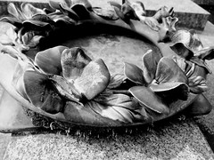 Ceramic Wreath (Broot - Thanks for a half million views!!) Tags: blackandwhite bw plant paris flower monochrome cemetery grave spring memorial mourning tomb offering april tribute montparnasse grief