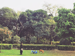 And They Both Fast Approached Towards Everlasting Breakup (Mayank Austen Soofi) Tags: up gardens break delhi fast both and they lover towards lodhi walla everlasting approached