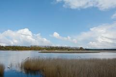 Spykerscher See, Rgen (Caora) Tags: balticsea april rgen ostsee ruegen